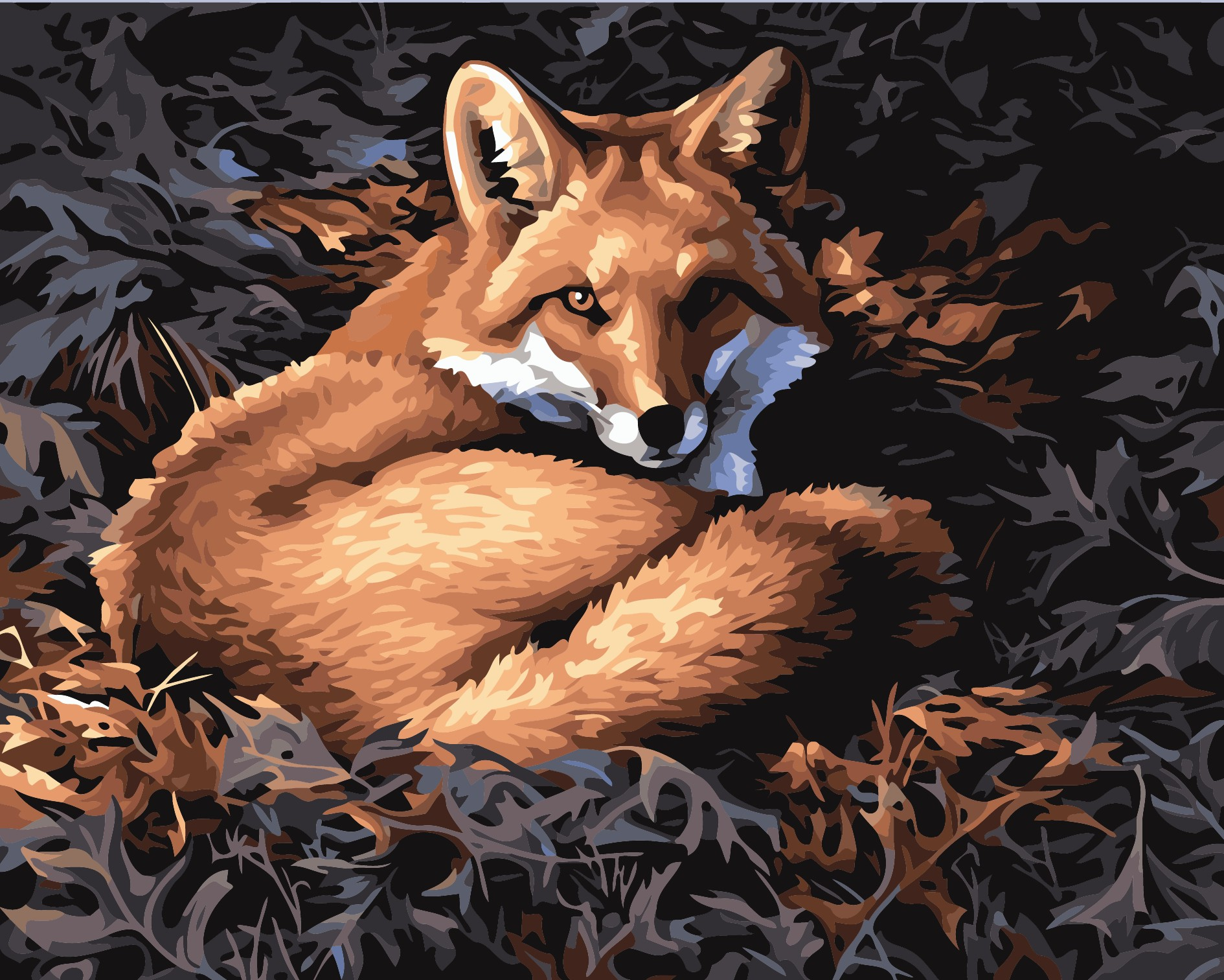 ̿̿̿(•̪ )Frameless DIY pintura al óleo silver fox Por Kits de números ...