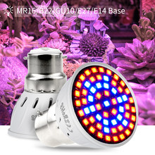 full spectrum LED Grow Light E27 plant growth lamp 220V E14 Greenhouse led Bulb GU10 vegetable Growing tent Indoor GU5.3 MR16(China)