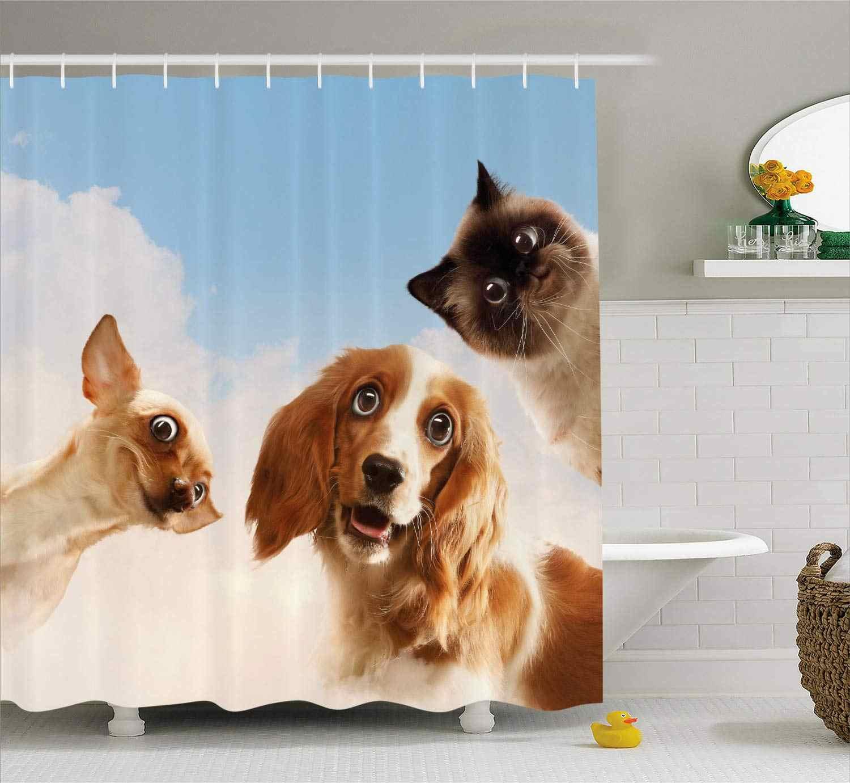 猫と犬国内ホームペット友人陽気な表現スカイ雲コラージュ浴室装飾ブルークリーム