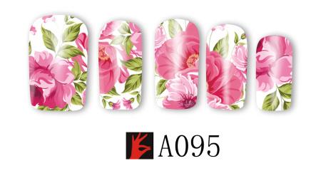 A095(1)
