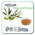 Природные Супер Антиоксидантной 3%-20% Гидрокситирозола, 20%-70% Олеуропеин Экстрактом оливковых Листьев