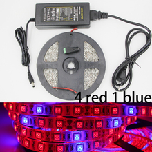 Full Spectrum Led Grow Lamp 5050 Grow LED Flexible Strip 4:1 Tape Light + LED Driver For Aquarium Greenhouse Plant Flower Grows