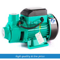 QB60 1/2HP or 0.5 Garden Farm Pool water Pump 35m Horizontal height 35 l/min