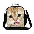 Многоразовые сумки обед для детей кошка печатных небольшой обед сумка-холодильник для девочек милые животные кулер пакеты для ланч-боксов для женщин