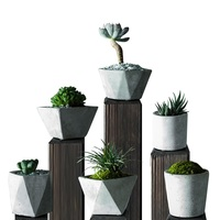 6 Kinds Geometric Greative Coment Flower Seeds Container Meaty Plants Pot Landscape For Garden Household Decoration