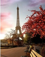 Free Shipping new arrival 25cm Paris Eiffel Tower model Figurine statue wedding decoration/Home decor