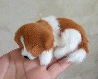 10x7cm Yellow White Prone Dog Hard Model Polyethylene Real Furs Handicraft Figurines Miniatures Home Decoration Toy