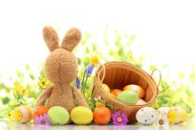 easter photography backdrops flower egg frames fundo fotografico easter day zj