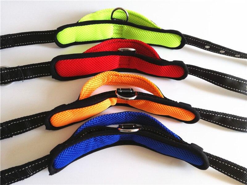 Dog Collar and Leash Set (22)