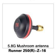 5.8G de Setas Antena para Walkera Runner Runner 250 Antelación GPS Drone RC Quadcopter Piezas Originales 250 (R)-Z-16