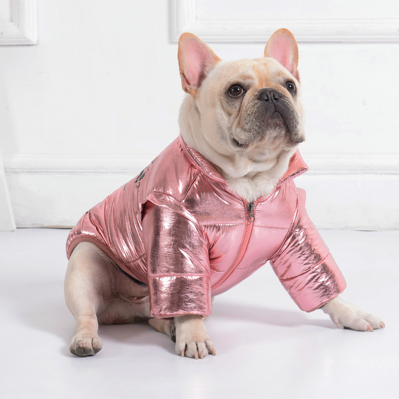 Disco Dog Jacket