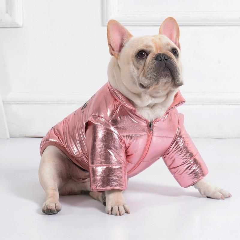 Disco Dog Jacket