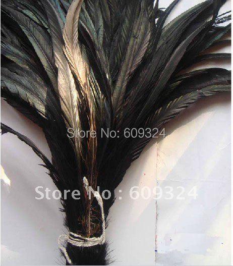 Natural Cock tail feather Black 10-18 in//25-45 cm 100 pcs Carnaval À faire soi-même Costume