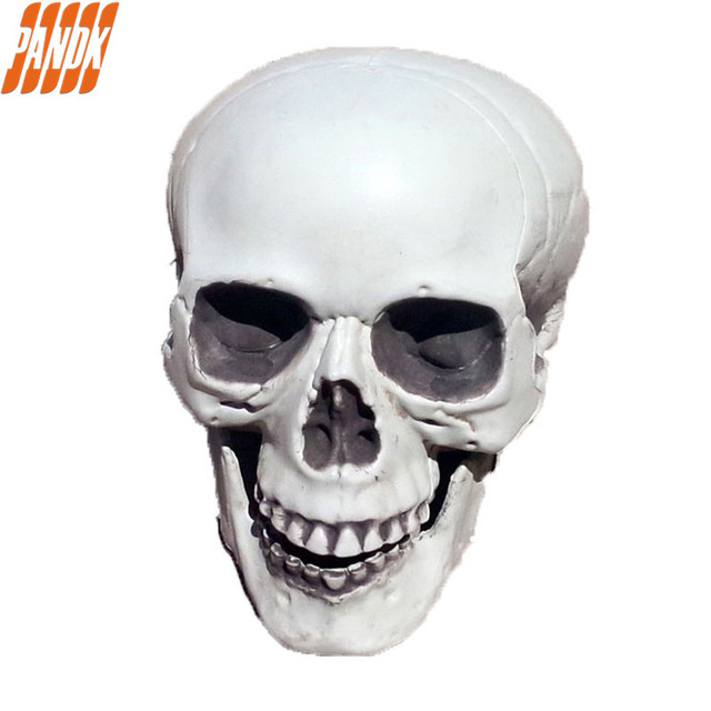 life size realistic halloween skull decorations holiday props haunted house simulation plastic halloween skeleton skull head - Halloween Skeleton Head
