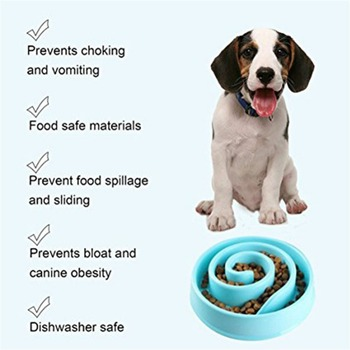 2019 portable pet dog feeding food
