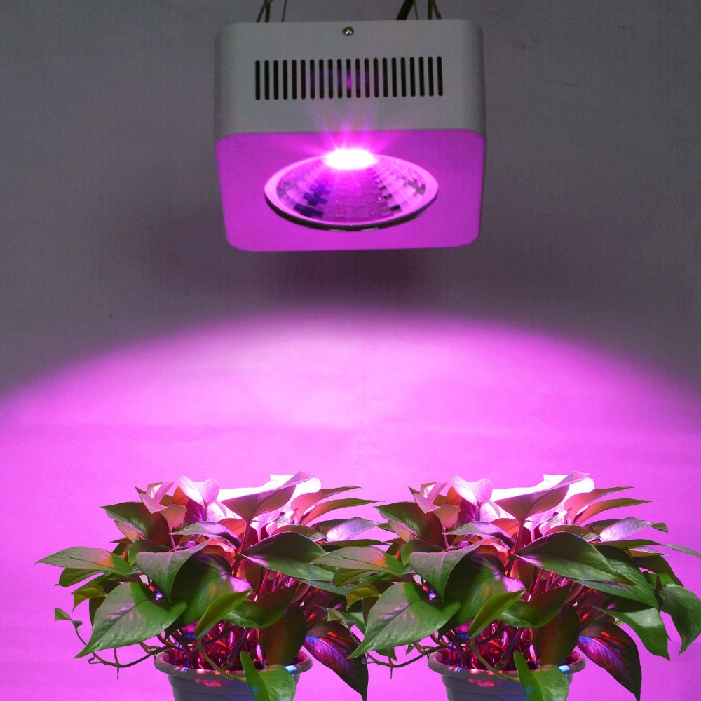 2pcs/lot Free Shipping US Stock  200W Full Spectrum COB Led Grow Light for Indoor Garden 100%quality with 2 years warranty dhl ems free shipping 12pcs lot 20w cree cob led track light for shops gallary lighting