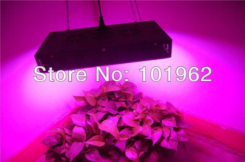 Cheap 165W LED grow lghts for plants