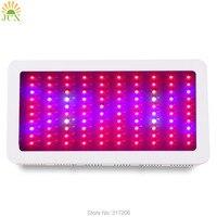300 wát Full spectrum led grow ánh sáng 660nm Cyan Xanh 100x3 wát bán buôn Grow lights đối với Nhà hệ thống thủy canh Phát Triển lều Thực Vật Veg