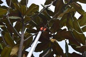 Image 5 - Очень длинный секатор KSEIBI, обрезка и удержание, обрезка, максимальная резка, 1/2 дюйма, резак для фруктов и деревьев для сада