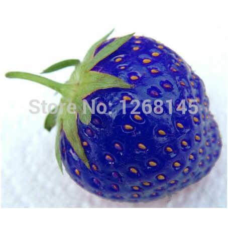 200 шт синяя клубника, редкие фрукты овощи прекрасный бонсай-домашний сад бесплатная доставка