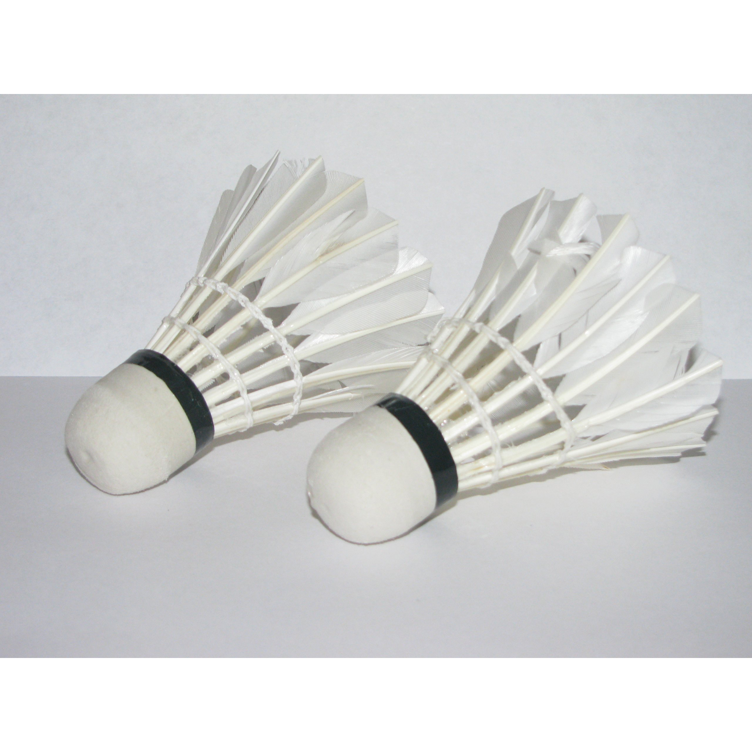 MUMIAN LED Light-Up Badminton Birdies (Set of 2) Shuttlecocks Shuttlecock Feather