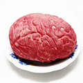 April Fool's Day Halloween supplies terror human organs entire toy props haunted house horror Simulation brain