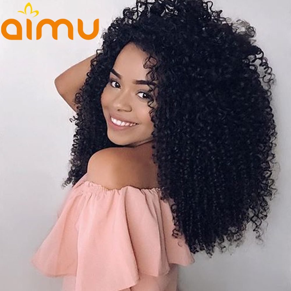 13X6 PrePlucked Afro Kinky Curly Lace Front Wig With Baby Hair 250 Density Brazilian Virgin Human
