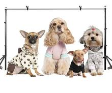7x5ft Pet Dog Backdrop Cute Dressed Photography Background and Lovers Props
