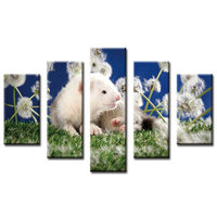 5D Diy diamond painting cross stitch rhinestone Mosaic kits home decoration square Full Diamond Embroidery white mouse dandelion