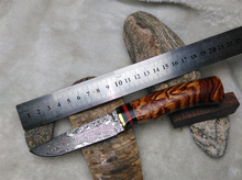 Handmade Forged Damascus Hunting Knife Camping Survival Knife Fixed Blade Tactical Knife Cocobolo Hanlde Brown