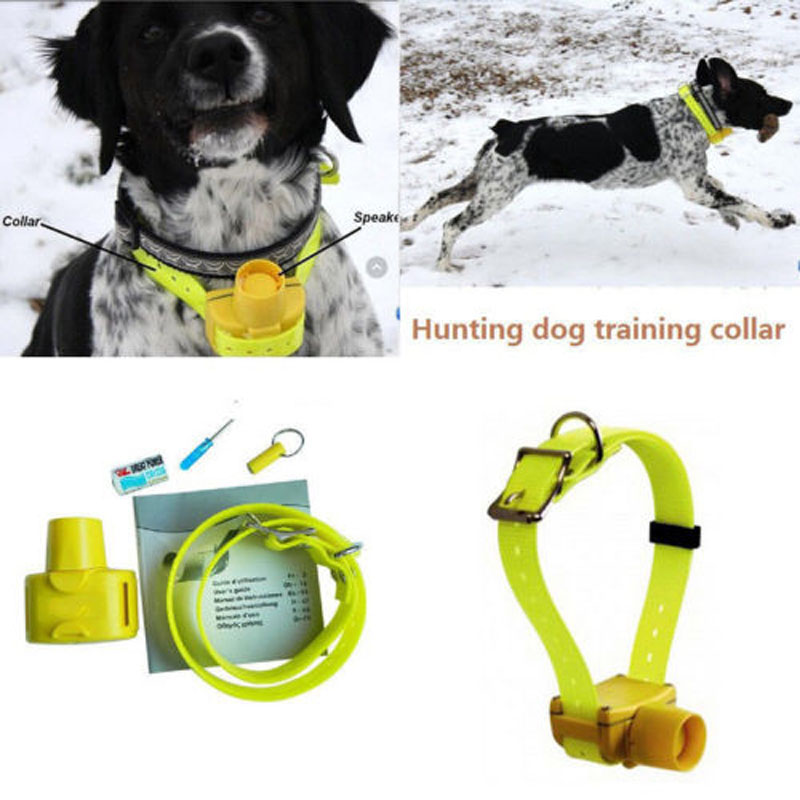 Waterproof Dog Training Collars for Hunting Dogs with 8 built in Beeper and Magnetic Switch 2
