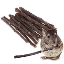 Stick Rabbits Hamster Natural-Toys Apple-Tree-Branch Parrots Squirrel Chew 20pcs