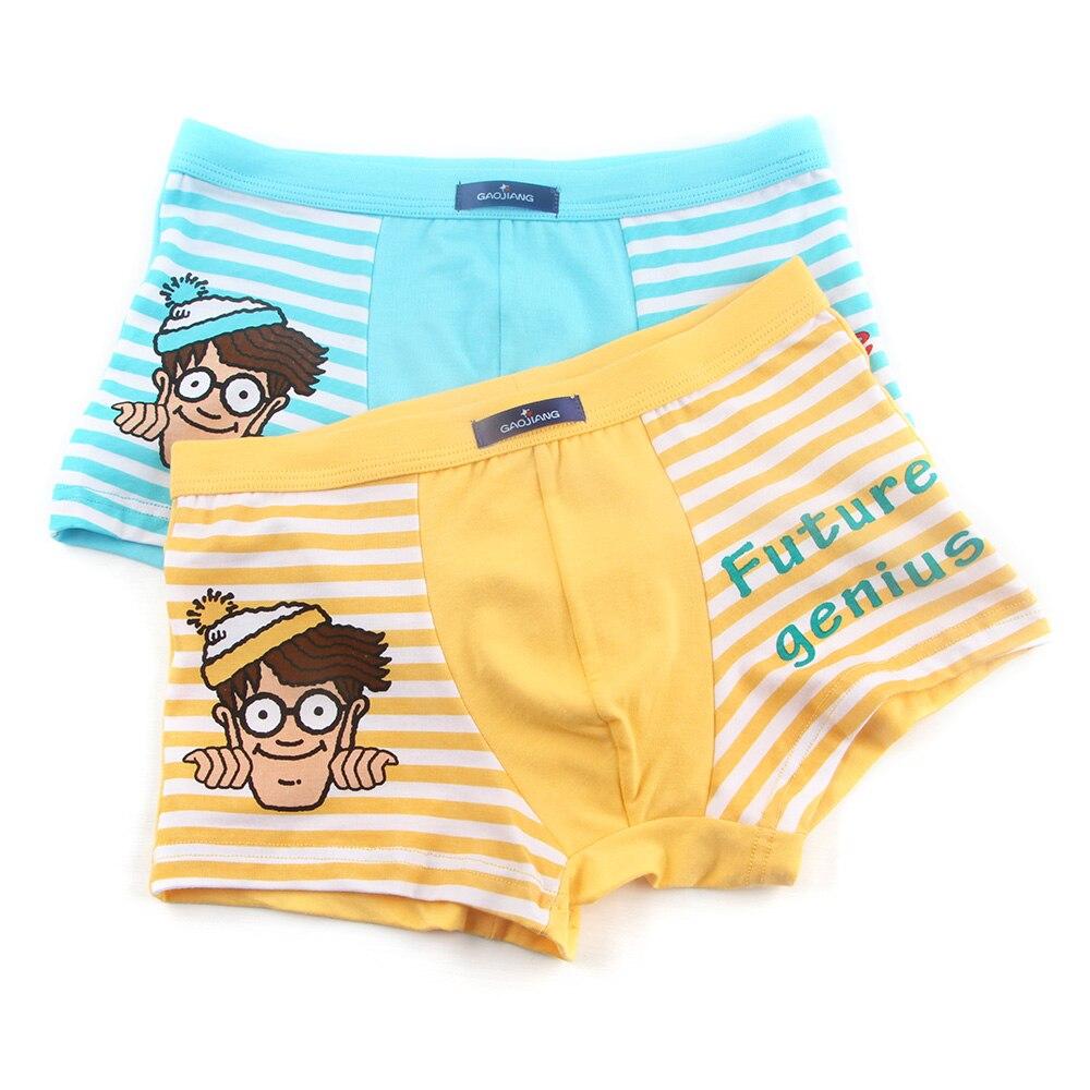 f759d1853923 2018 New 2 Pcs/lot Bamboo Fiber Underpants Comfortable Breathable Underwear  Kids boys Boxer for 3-10Yrs Boys Briefs QS1006 | Mikes Wholesale Mart