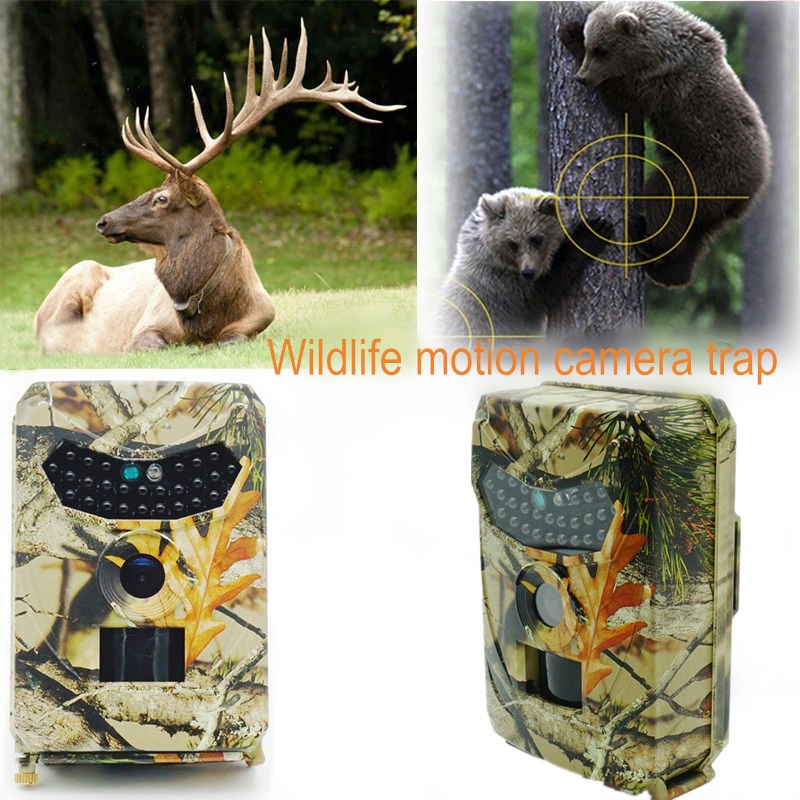 Wild Camera Photo Traps 12MP 1080P Motion Triggered Hunting Wildcamera Trap IP56 Waterproof Outdoor Night Vision