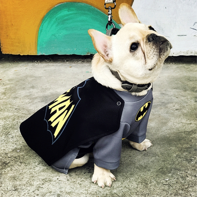 dog fancy cosplay clothes (14)