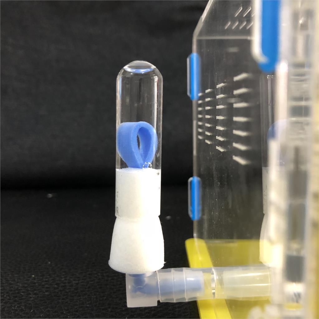 Муравей гнездо подачи воды башня Муравей мастерская DIY аксессуары части соединитель стеклянная трубка и губка для одного набора муравей До...
