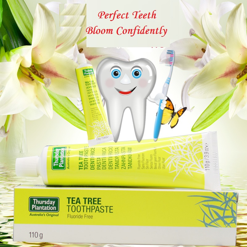 Original Australia Tea Tree Toothpaste Fluoride Free Maintain healthy gums Cleans teeth fresh mouth prevent tooth decay plaque household mouth shape 2pcs toothpaste squeezers