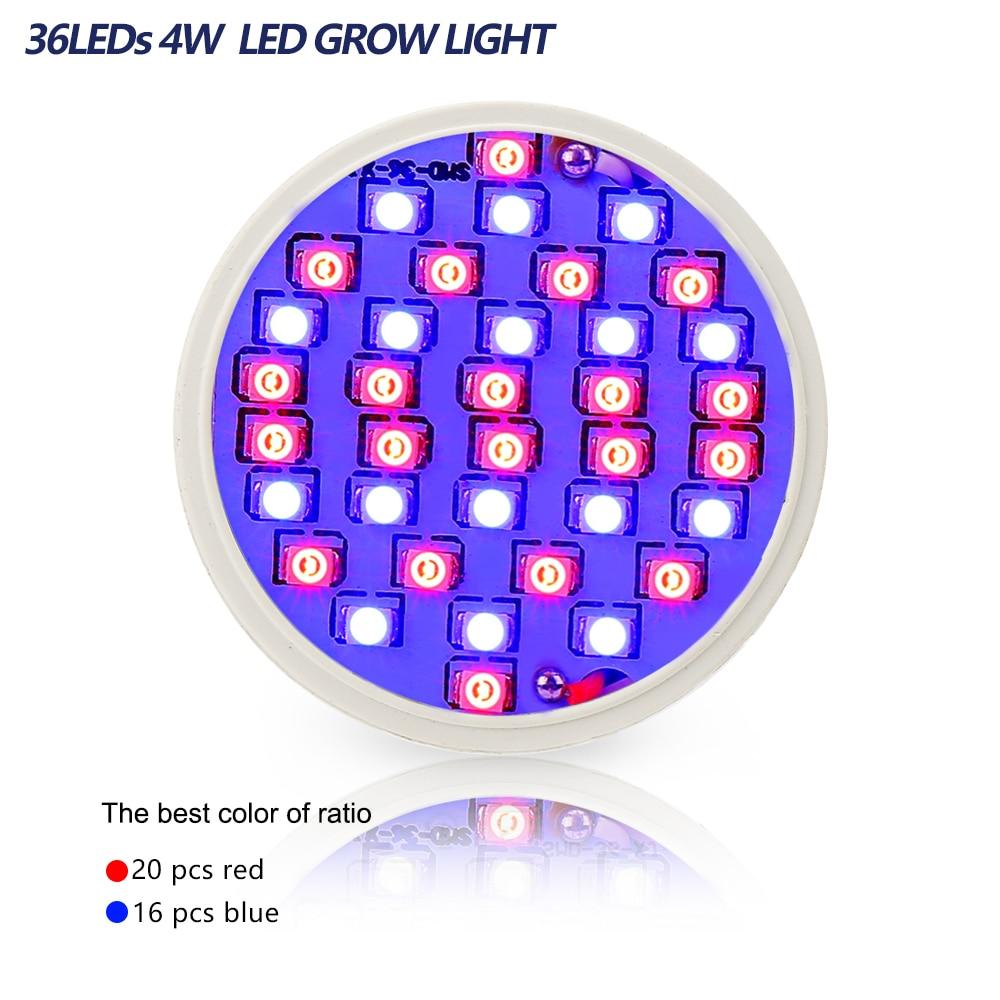 4pcs / lot 4W E27 20Red 16Blue 36Leds LED Bitki Çadır Akvarium - Professional işıqlandırma məhsulları - Fotoqrafiya 3