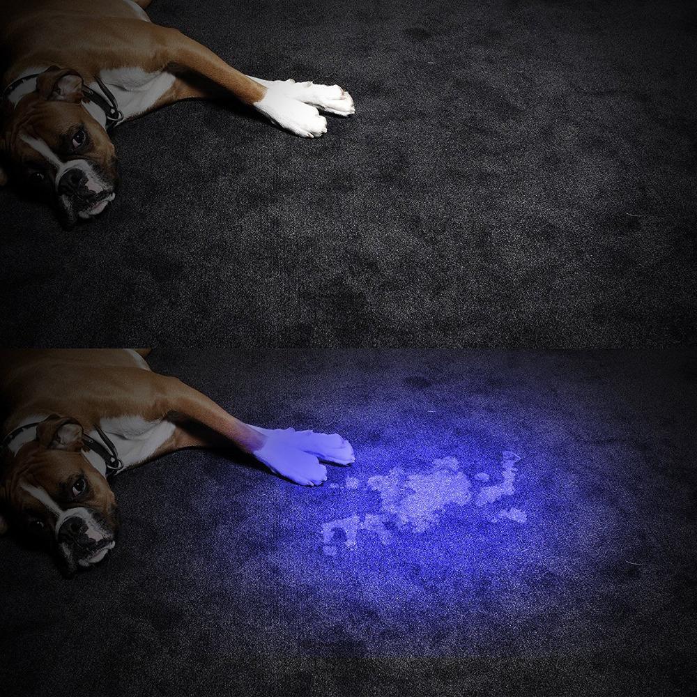 21led uv blacklight flashlight (8)