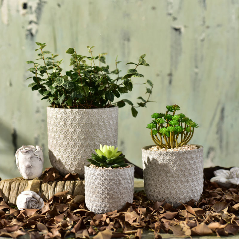 Flowerpot mold anaglyph snow 3D geometric texture of concrete cement green plant polycaria plant silicone mold