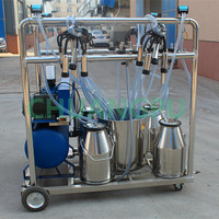 dairy cow milking machinery