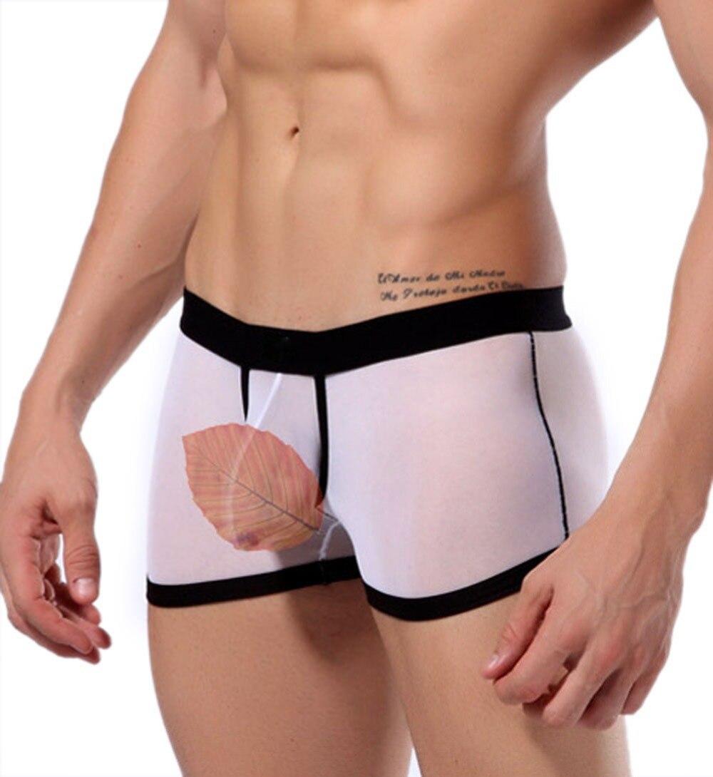 Sexy erotic man