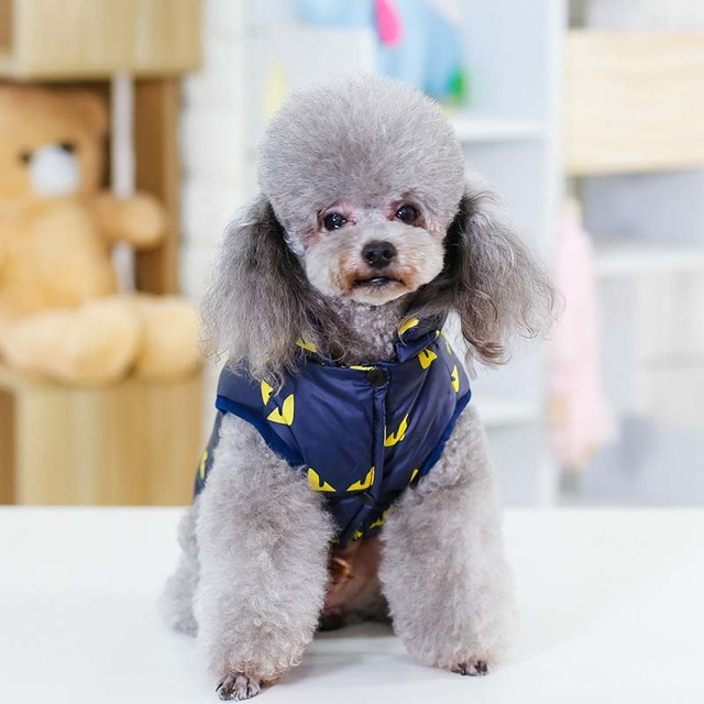 New Fashion Halloween Little Devil Printed Pet Dog Jacket Winter Windproof Warm Puppy Coat Comfortable Clothes for Small Dogs20E