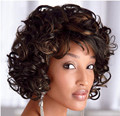 Celebrity Women Short Curly Wigs Synthetic Hair Wigs for African American Black Women Wig  Free Wig Cap Free Shipping