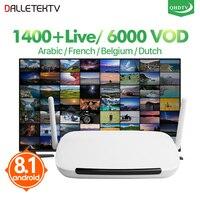 IPTV Arabic Dalletektv Android 8.1 Smart IP TV Box TV Receiver Belgium IPTV French IPTV Box 1 Year QHDTV Code Media Player IP TV