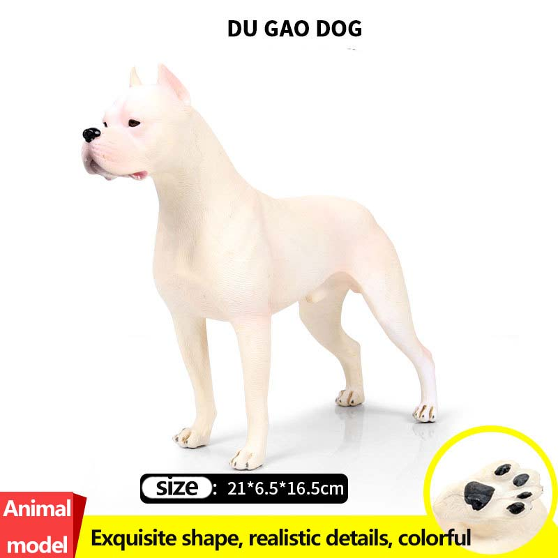 New Dogo Argentinos bull terrier Shiba Inu dog model toy ornaments Collection Model Toys Action Figure creative sled dog bulldog model pinata toys pet dog piggy bank bull terrier akita dogs siberian husky dogs save money tank model