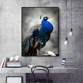 COSBILL New Home Decoration Blue Peacock Animal Prints Canvas Modern Poster Art Wall Picture Painting For Living Room Decor DW25