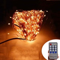 Remote Control 50M 165Ft 500 LEDs Copper Wire Warm White LED String Light Starry Lights Power