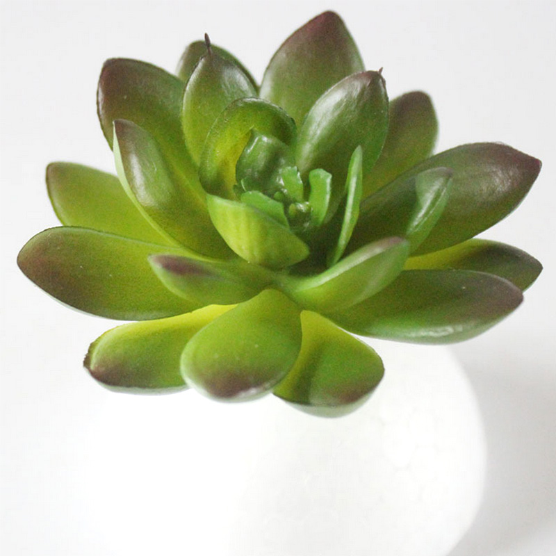 Simulation Mini Plastic Miniature Succulents Plants Garden Home Office Decor