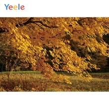 Yeele Autumn Scenery Photocall Fallen Yellow Leaves Photography Backdrops Personalized Photographic Backgrounds For Photo Studio цена